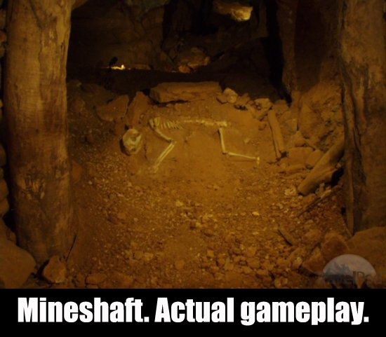 mineshaft copy